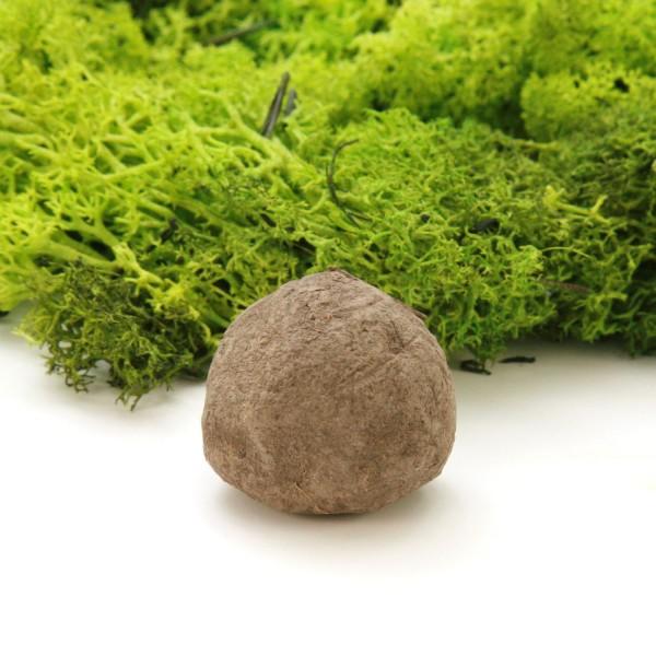 """Seedball """"Bienenliebe"""""""